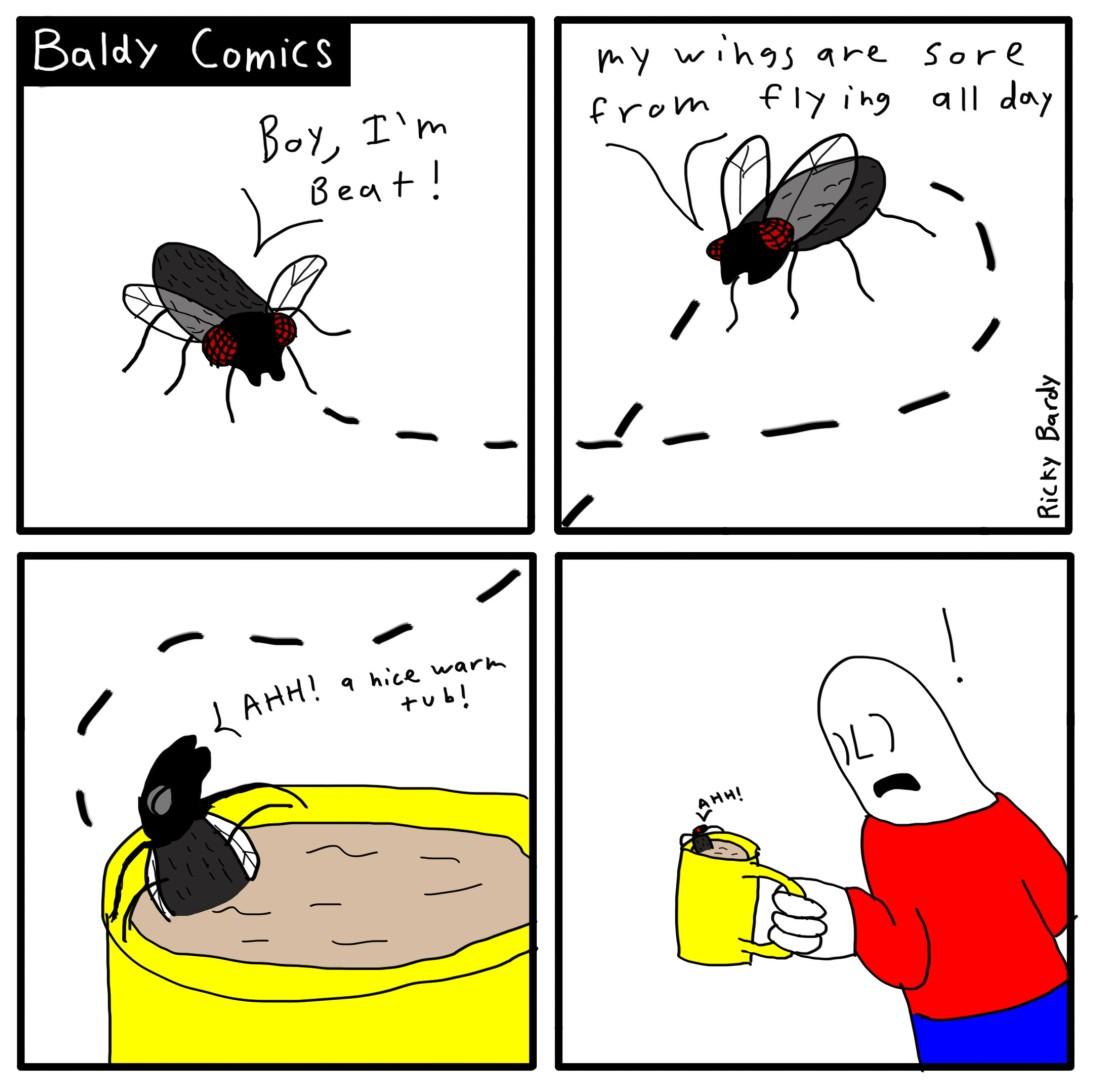baldy-comics-69-fly