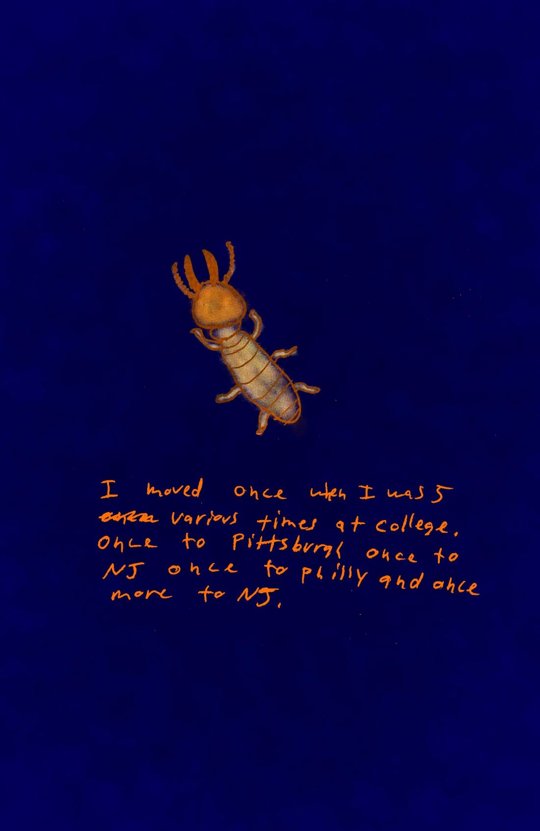 bugs pg 16 c