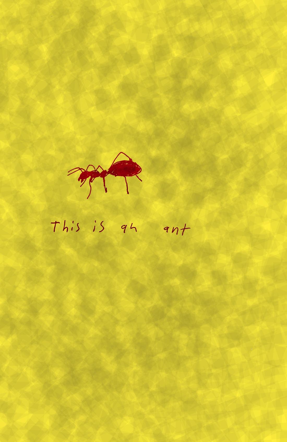 bugs pg 4 c